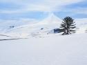 geometricas-ski-tour-11